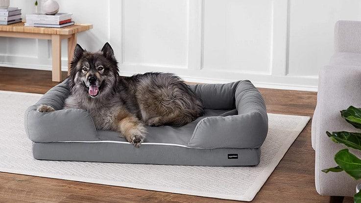 Comparatif meilleur lit pour chien